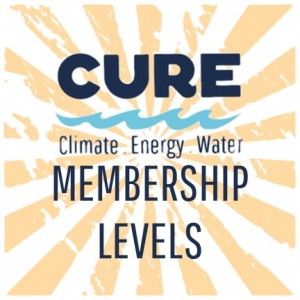 NEW CURE Membership Levels graphic