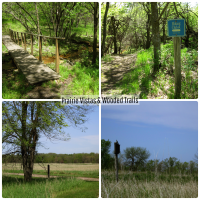 BSL State Park Collage
