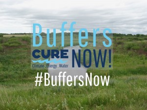 CURE Buffers Now Graphic with good buffer