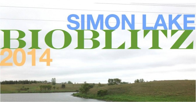 Simon Lake BioBlitz_2014