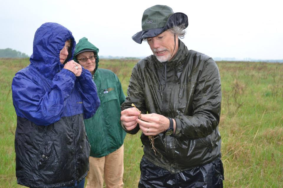MN DNR Plant Ecologist battling the wind and rain to share his passion for the Chippewa Prairie.