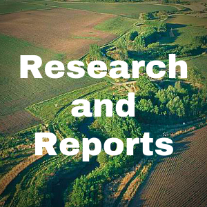 Research & Reports Button