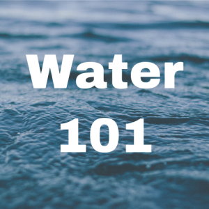 Water 101 Button