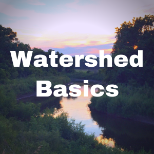 Watershed Basics Button