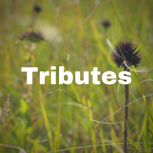 Tributes page button