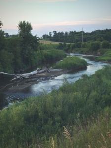 Picture of a river in summer.